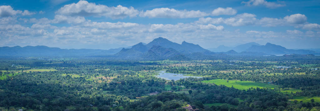 View from the top of Sigiriya Rock